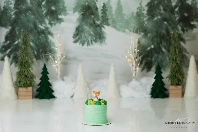 Edmonton cake smash photographer-wintery woodland theme